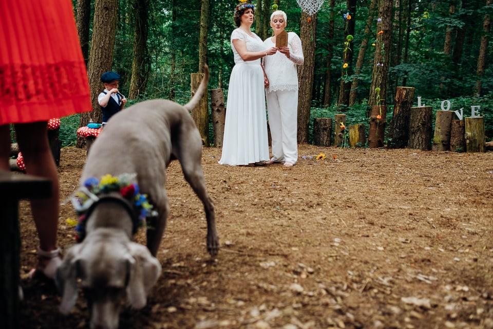 camp katur woodland lesbian wedding-64