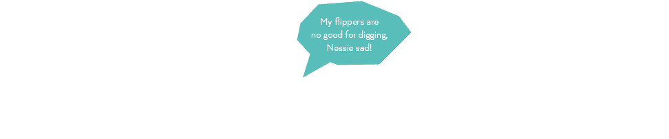 My flippers are no good for digging. Nessie sad.